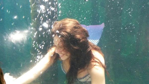 Aquario de Sao Paulo Sereia 5